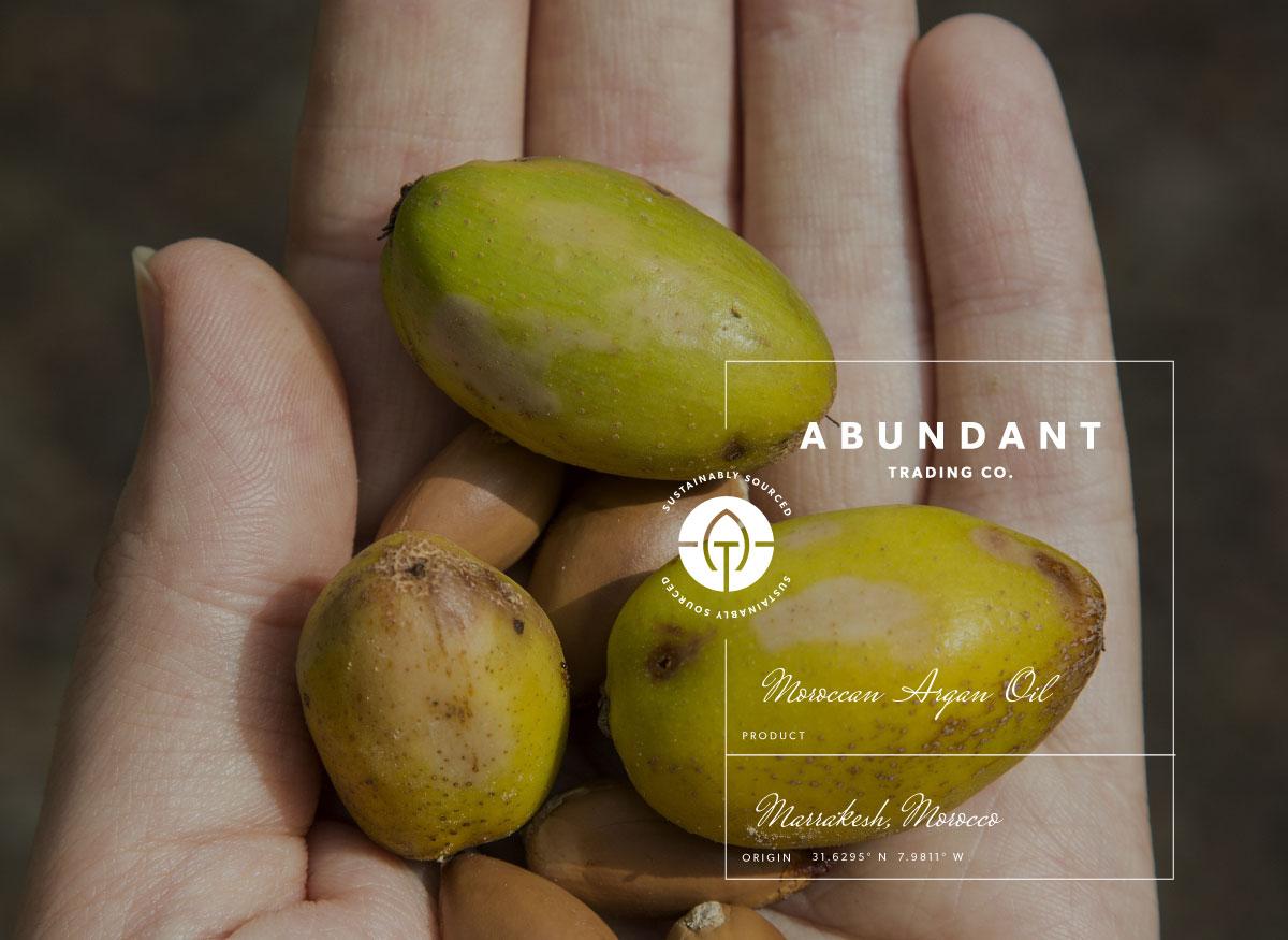 Abundant Trading Company - Creative Tonic